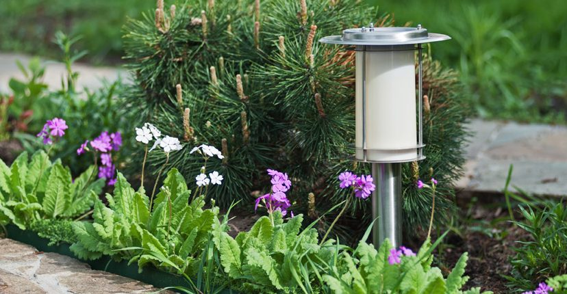 landscape solar lighting